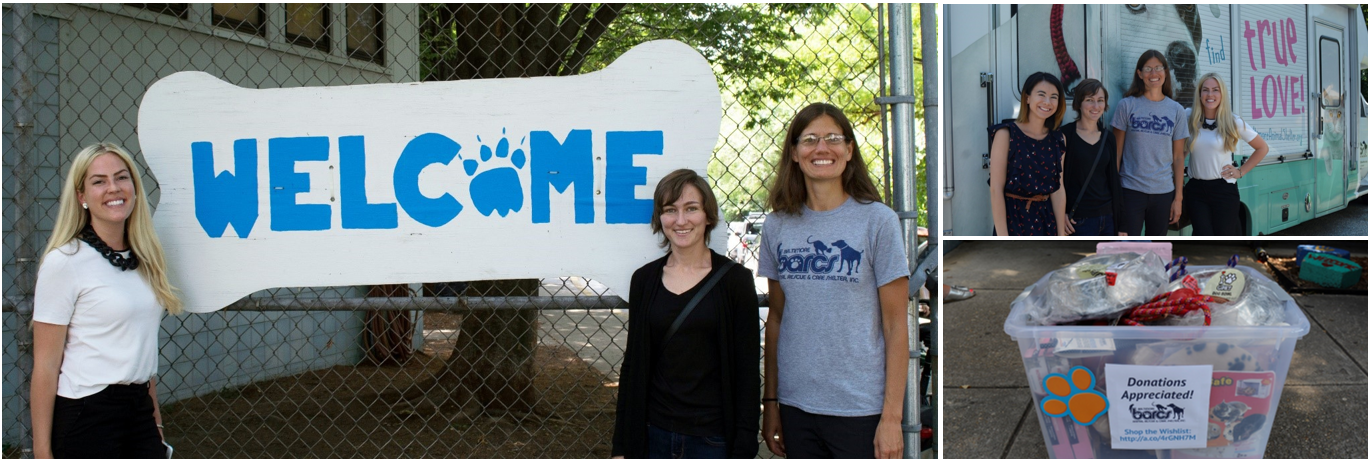NewWave gives back to Baltimore Animal Shelter